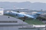 Koenig117さんが、名古屋飛行場で撮影した航空自衛隊 U-125A (BAe-125-800SM)の航空フォト(写真)