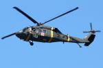 Double_Hさんが、RKSG - Camp Humphreysで撮影したアメリカ陸軍 UH-60L Black Hawk (S-70A)の航空フォト(写真)