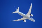 JA946さんが、伊丹空港で撮影した全日空 787-8 Dreamlinerの航空フォト(写真)
