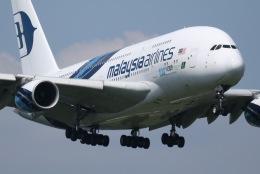tyusonさんが、成田国際空港で撮影したマレーシア航空 A380-841の航空フォト(飛行機 写真・画像)