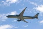 つっさんさんが、関西国際空港で撮影したベトナム航空 A350-941XWBの航空フォト(写真)