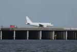 ケロさんが、羽田空港で撮影したGCLポリー・エナジー・ホールディングス A318-112 CJ Eliteの航空フォト(写真)
