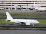 kikiさんが、羽田空港で撮影したGCLポリー・エナジー・ホールディングス A318-112 CJ Eliteの航空フォト(写真)