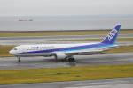 じゃりんこさんが、中部国際空港で撮影した全日空 767-381の航空フォト(写真)