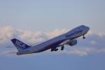 じゃりんこさんが、中部国際空港で撮影した日本貨物航空 747-8KZF/SCDの航空フォト(写真)