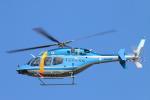 reonさんが、名古屋飛行場で撮影した長崎県警察 429 GlobalRangerの航空フォト(写真)