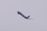 mild lifeさんが、伊丹空港で撮影した全日空 787-9の航空フォト(写真)