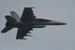 らひろたんさんが、厚木飛行場で撮影したアメリカ海軍 F/A-18F Super Hornetの航空フォト(写真)