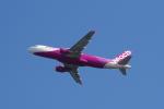 yabyanさんが、関西国際空港で撮影したピーチ A320-214の航空フォト(飛行機 写真・画像)