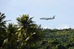 F510-510さんが、グアム国際空港で撮影した日本航空 737-846の航空フォト(写真)