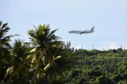 グアム国際空港 - Antonio B. Won Pat International Airport [GUM/PGUM]で撮影されたグアム国際空港 - Antonio B. Won Pat International Airport [GUM/PGUM]の航空機写真