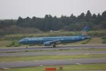 meijeanさんが、成田国際空港で撮影したベトナム航空 A321-231の航空フォト(写真)