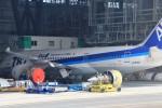 pcxさんが、羽田空港で撮影した全日空 787-8 Dreamlinerの航空フォト(写真)