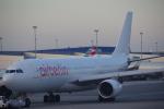 JA8037さんが、ジョン・F・ケネディ国際空港で撮影したエア・ベルリン A330-223の航空フォト(写真)