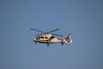 つっさんさんが、伊丹空港で撮影したオールニッポンヘリコプター AS365N2 Dauphin 2の航空フォト(写真)