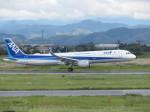 JA655Jさんが、米子空港で撮影した全日空 A321-211の航空フォト(写真)