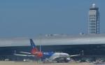toyoquitoさんが、関西国際空港で撮影したエアカラン A330-202の航空フォト(写真)
