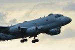 storyさんが、下総航空基地で撮影した海上自衛隊 P-1の航空フォト(写真)