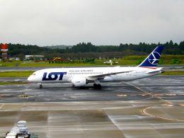 まいけるさんが、成田国際空港で撮影したLOTポーランド航空 787-8 Dreamlinerの航空フォト(写真)