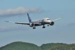 tutomuさんが、岡山空港で撮影した全日空 787-8 Dreamlinerの航空フォト(写真)