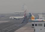 ふじいあきらさんが、羽田空港で撮影した上海航空 767-36Dの航空フォト(写真)