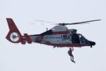 チャッピー・シミズさんが、ロングビーチ空港で撮影したアメリカ沿岸警備隊 HH-65Cの航空フォト(写真)