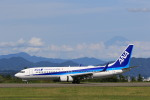 トラッキーさんが、静岡空港で撮影した全日空 737-881の航空フォト(写真)