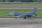 pringlesさんが、長崎空港で撮影したアメリカ空軍 F-16CM-50-CF Fighting Falconの航空フォト(写真)