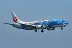 tsubasa0624さんが、羽田空港で撮影した日本トランスオーシャン航空 737-4Q3の航空フォト(写真)