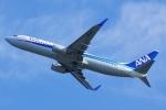 CB20さんが、関西国際空港で撮影した全日空 737-881の航空フォト(写真)