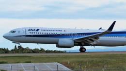 Ocean-Lightさんが、能登空港で撮影した全日空 737-881の航空フォト(飛行機 写真・画像)