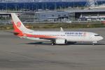 キイロイトリ1005fさんが、関西国際空港で撮影した奥凱航空 737-8KFの航空フォト(写真)