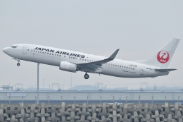 Wings Flapさんが、中部国際空港で撮影した日本航空 737-846の航空フォト(写真)