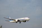 senbaさんが、成田国際空港で撮影した全日空 787-9の航空フォト(写真)