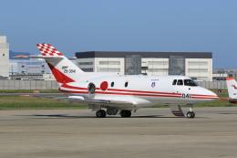 しののめさんが、徳島空港で撮影した航空自衛隊 U-125 (BAe-125-800FI)の航空フォト(写真)