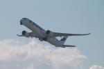 RAOUさんが、関西国際空港で撮影したフィンエアー A350-941XWBの航空フォト(写真)