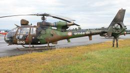 cathay451さんが、ポー・ピレネー空港で撮影したフランス陸軍 SA342M Gazelleの航空フォト(飛行機 写真・画像)