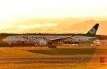バーダーさんが、新千歳空港で撮影したエバー航空 777-35E/ERの航空フォト(写真)