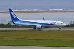かみじょー。さんが、新石垣空港で撮影した全日空 737-881の航空フォト(写真)