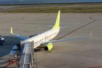Rsaさんが、神戸空港で撮影したソラシド エア 737-86Nの航空フォト(写真)