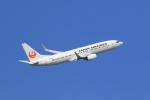 気分屋さんが、羽田空港で撮影した日本航空 737-846の航空フォト(写真)