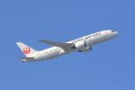 気分屋さんが、羽田空港で撮影した日本航空 787-8 Dreamlinerの航空フォト(写真)