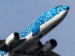 Mame @ TYOさんが、羽田空港で撮影した日本トランスオーシャン航空 737-4Q3の航空フォト(写真)