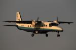 しま。さんが、調布飛行場で撮影した新中央航空 228-212の航空フォト(写真)