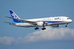 apphgさんが、羽田空港で撮影した全日空 787-8 Dreamlinerの航空フォト(写真)
