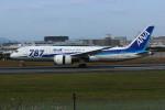 resocha747さんが、伊丹空港で撮影した全日空 787-8 Dreamlinerの航空フォト(写真)