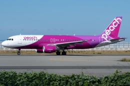 NH501さんが、関西国際空港で撮影したピーチ A320-214の航空フォト(写真)