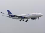 tokadaさんが、関西国際空港で撮影したエジプト航空 A340-212の航空フォト(写真)