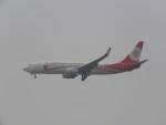 ねこすけさんが、天津浜海国際空港で撮影した福州航空 737-86Jの航空フォト(写真)