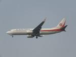 ねこすけさんが、天津浜海国際空港で撮影した奥凱航空 737-8ASの航空フォト(写真)
